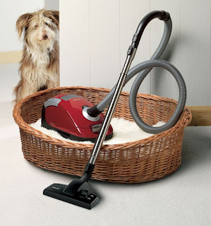 Miele C Cat And Dog Changing Active Airclean