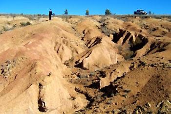 Soils: Soil