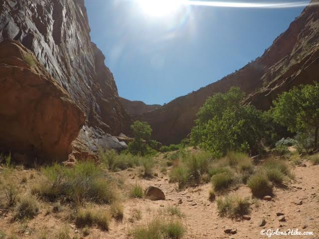 Hiking in Hunter Canyon, Moab