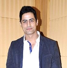 Indian TV Actor Mohit Raina salary for per day, small screen actor, model Income pay per Day, he is Highest Paid in 2016