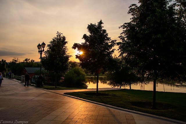 Закат в Царицыно: солнце в ветвях дерева