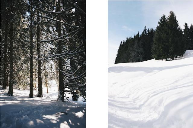 photographie montagne haute savoir bogeve