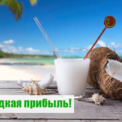 Кандидаты: Coconut7 – 15% чистой прибыли за 3 дня!