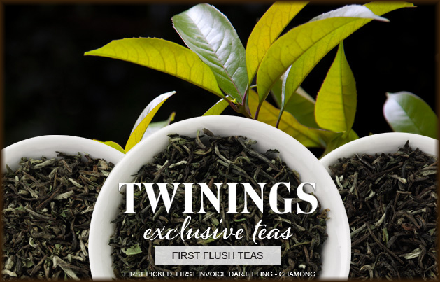 First Flush Darjeeling Teas from Twinings