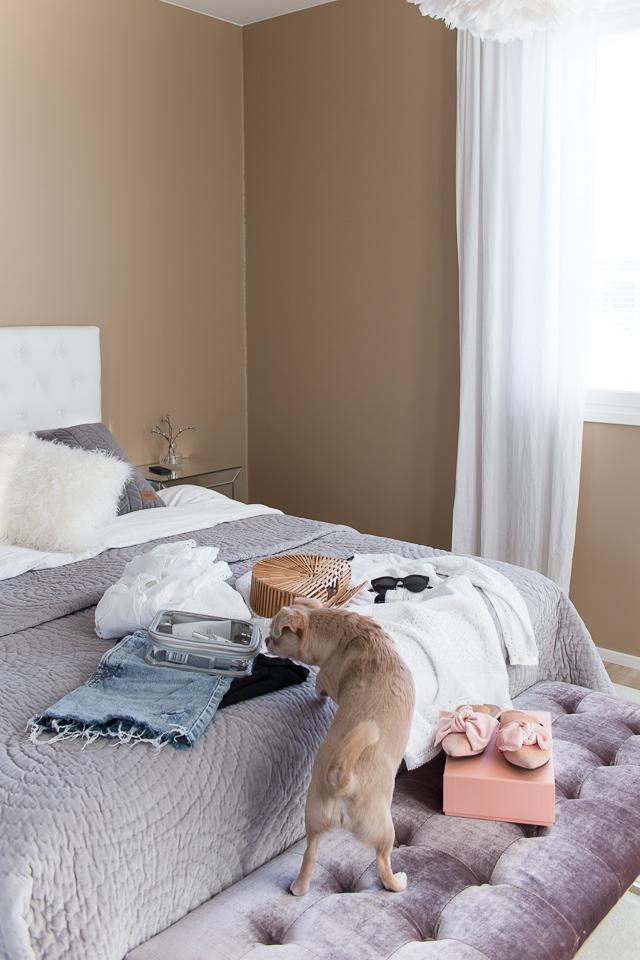 Villa H, loma pakkausta, chihuahua, makuuhuone, sisustus