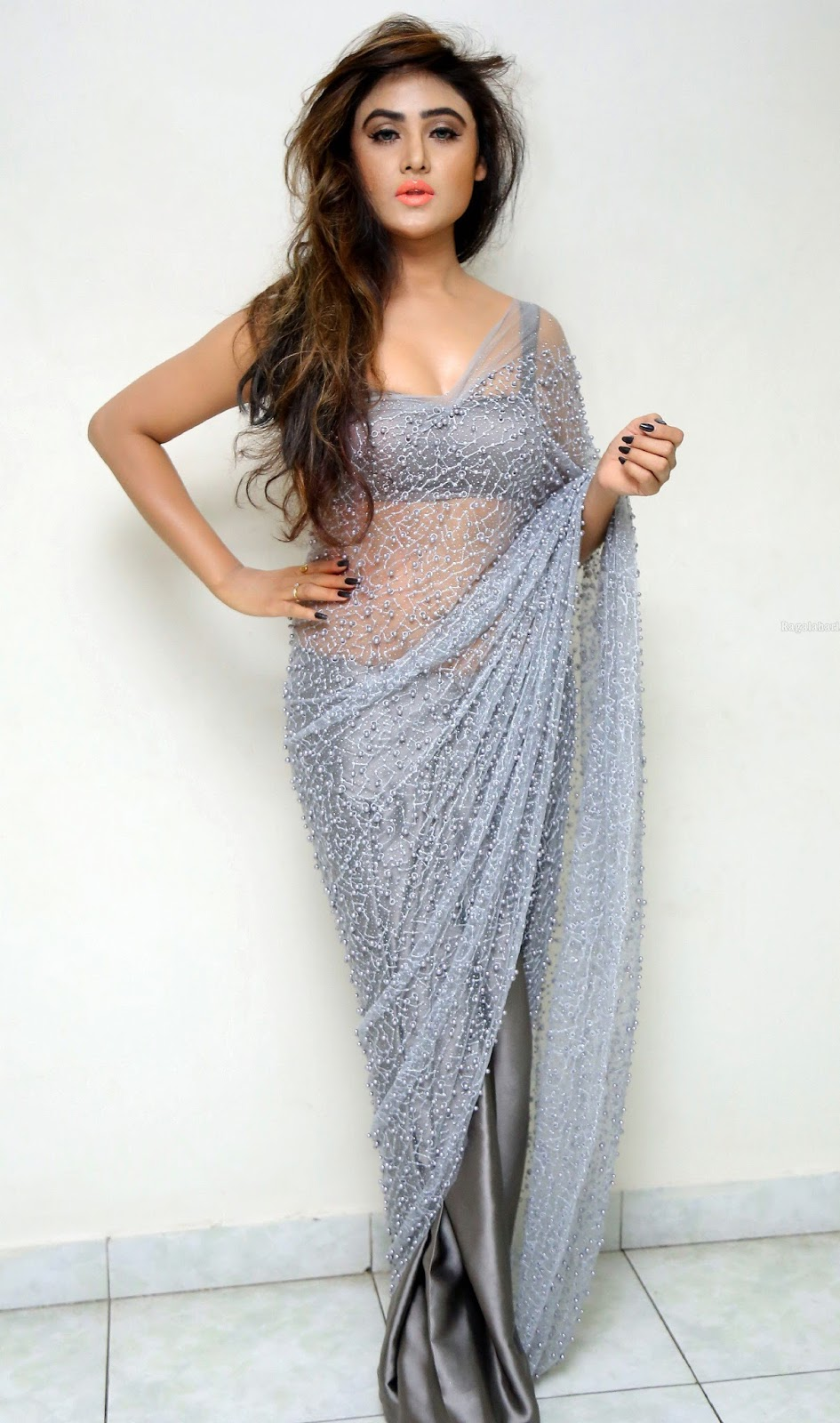 Saree Market Grey Colour Netted Saree Photos