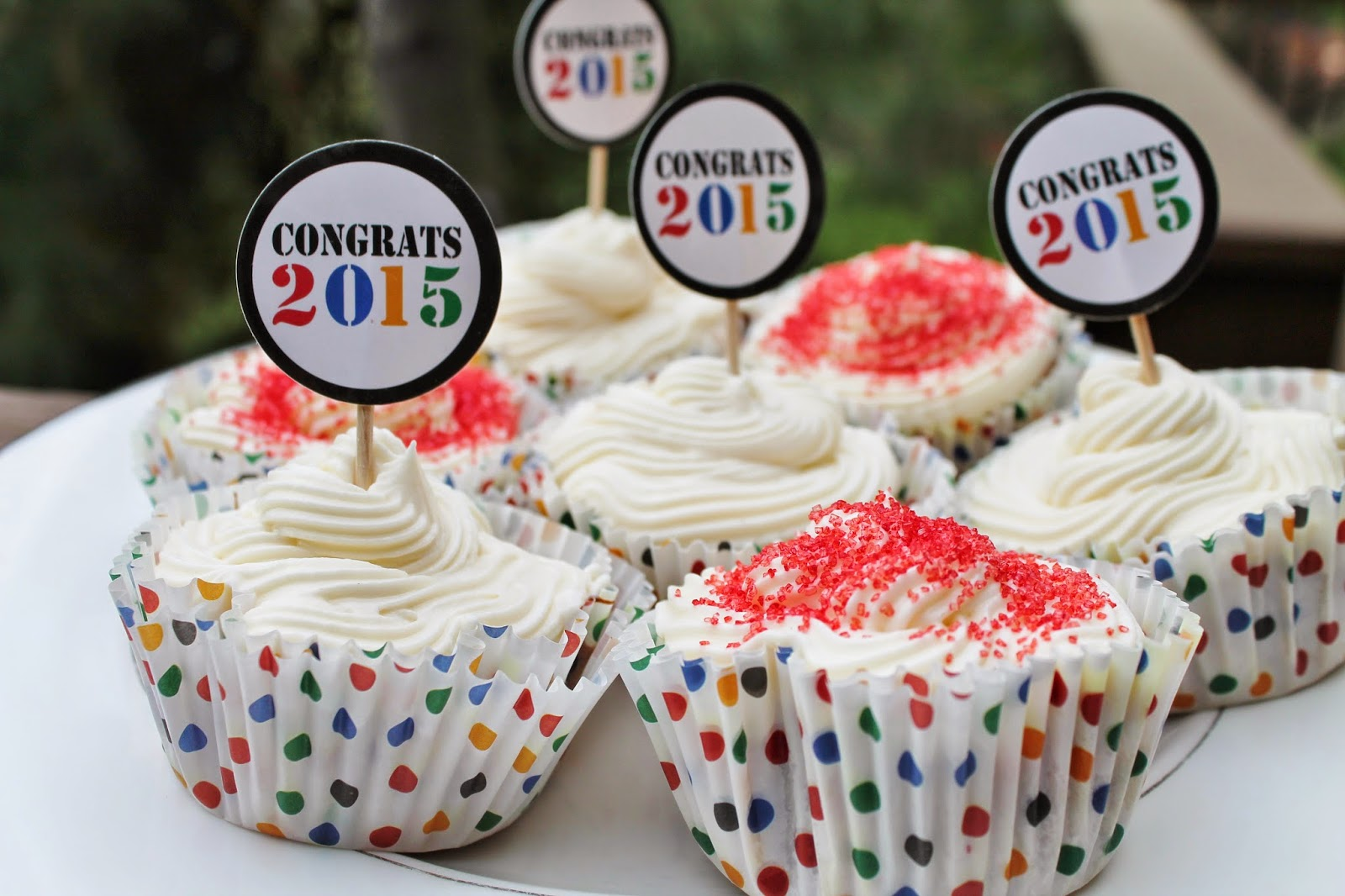 Strawberry Rhubarb Cupcakes//Congrats Grad! - Jersey Girl