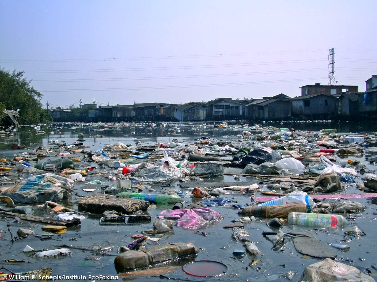 Submoradias em áreas de mangue no estuário de Santos são responsáveis por grande parte da poluição marinha por plástico que afeta região da Baixada Santista. Crédito: William R. Schepis/Instituto EcoFaxina