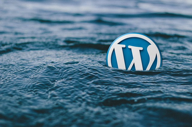 Everything There Is To Know About WordPress