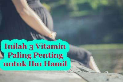 Inilah 3 Vitamin Paling Penting untuk Ibu Hamil
