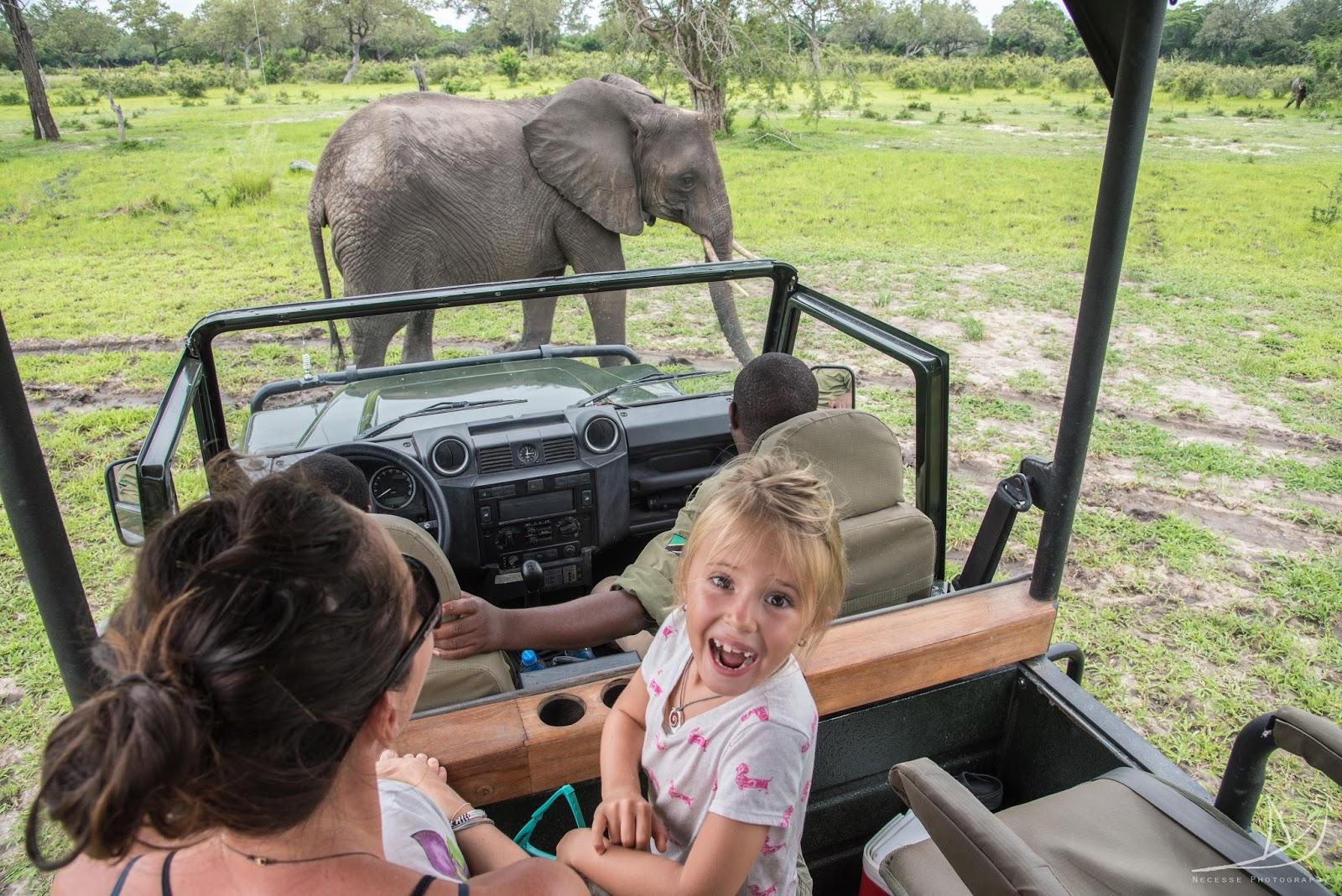 Our Tanzanian Safari