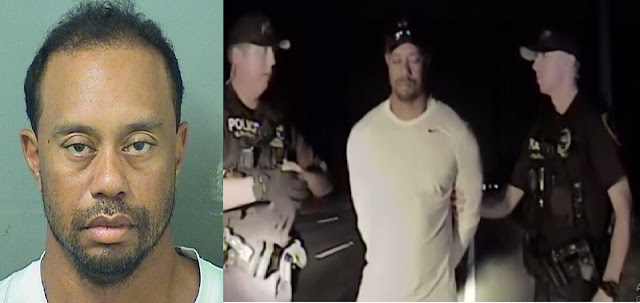 Tiger Woods Mug Shot and While Tiger was being Arrested By the Policeman