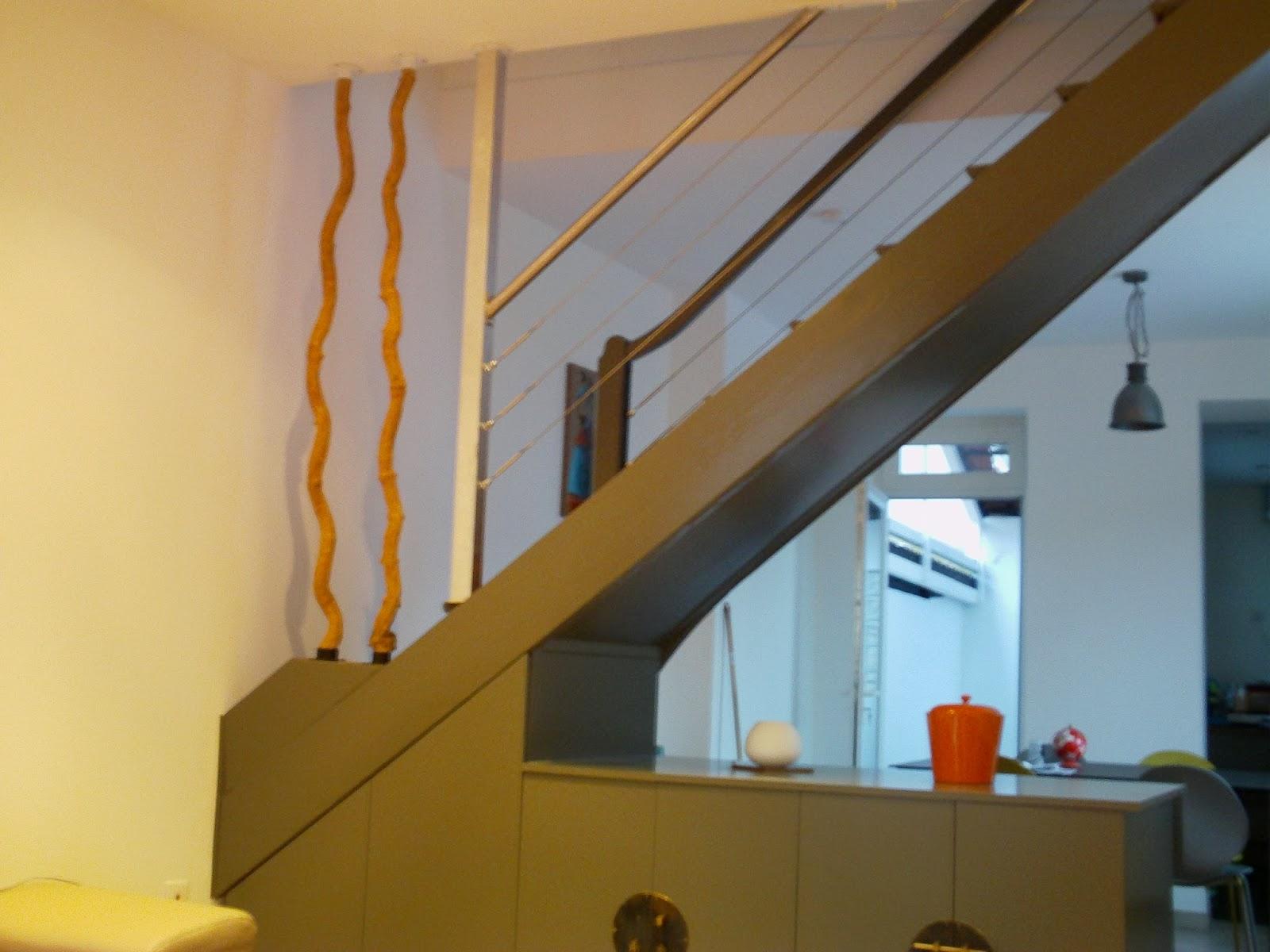 technysoud rampe d escalier cable inox fixation lianes. Black Bedroom Furniture Sets. Home Design Ideas