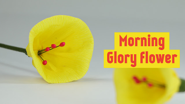 Crepe Duplex Paper Flowers Morning Glory Making Craft Tutorial