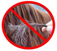 Benarkah perempuan yang berambut panjang dan tebal lebih disukai oleh banyak orang terutama  7 Tips Memanjangkan Rambut Dengan Cepat