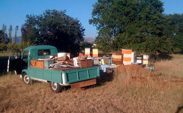 Βρέθηκε ο κλέφτης μελισσιών...