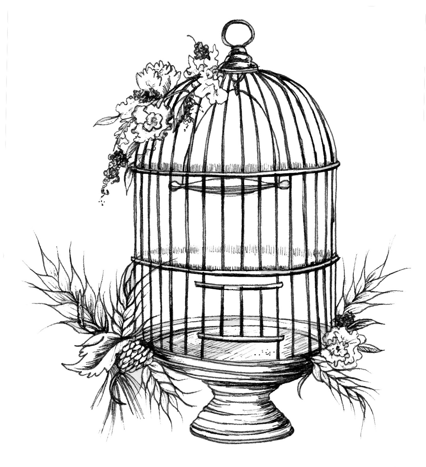 Rustic Birdcage Illustration