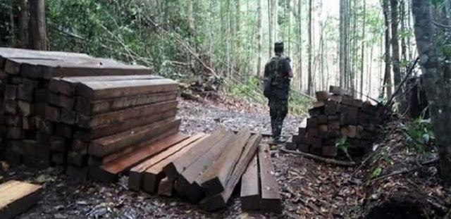 Media Malaysia Beritakan TNI Culik Lima Warganya