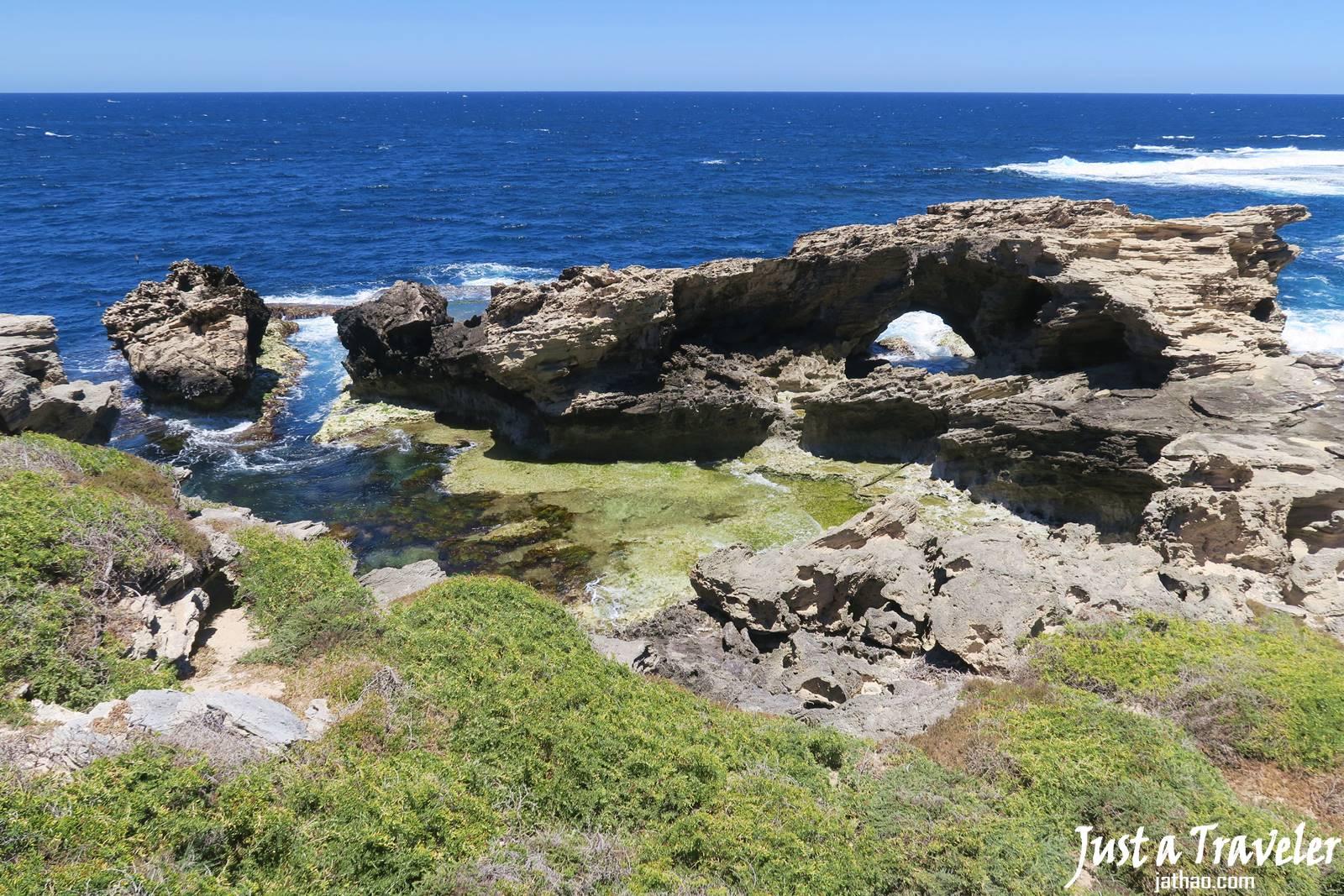 澳洲-西澳-伯斯-景點-羅特尼斯島-Rottnest Island-賞鯨-推薦-自由行-交通-旅遊-遊記-攻略-行程-一日遊-二日遊-必玩-必遊-Perth
