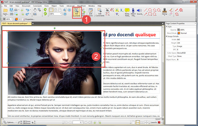Edit file with PDF-XChange Editor