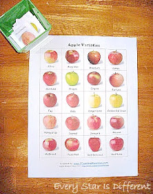 Types of Apples Match Up