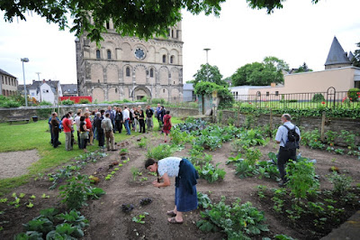 Public vegetable planting session in Andernach.