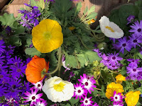 Think Spring and Summer…Think Color and Variety!!! Mixing Bulbs in your garden beds