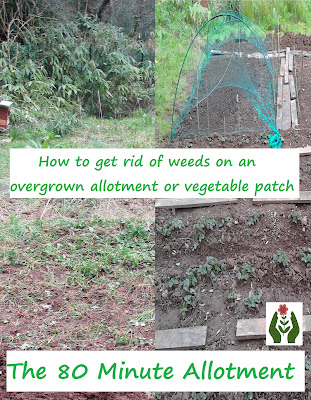 How to get rid of weeds from an overgrown allotment or vegetable patch 80 Minute Allotment Green Fingered Blog