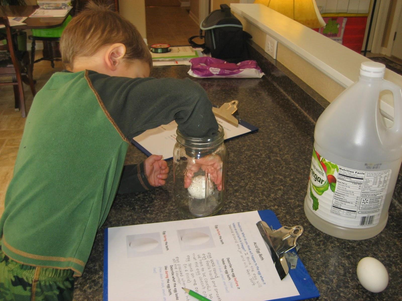 Living Our Homeschool Life A Balancing Act Of Faith Acid