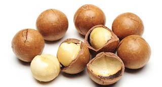 veterinaria online intoxicacion con nueces macadamia perros