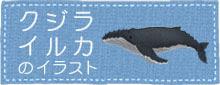 クジラやイルカのイラスト