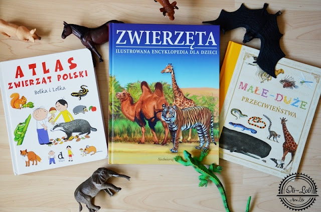 Wszystko, co Twoje dziecko chce wiedzieć o zwierzętach