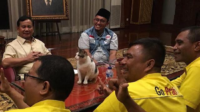 BPN Prabowo-Sandi: Masyarakat Jangan Beli Kucing dalam Karung