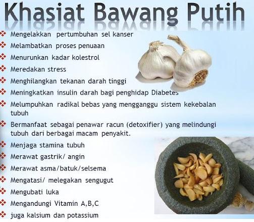 Artikel Kesehatan: Manfaat Bawang Putih Untuk Kesehatan