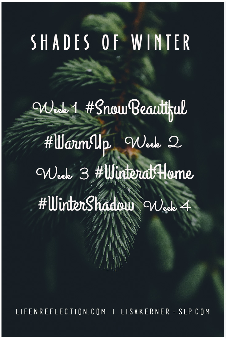 Shades of Winter Photography Prompts