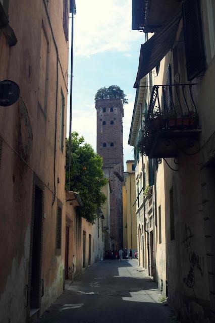 Wieża Torre Guinigi, Lukka