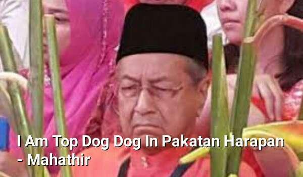 Mahathir Sanggup Jadi Top Dog Pada DAP Dan PKR Semata-Mata Kerana Takut RCI Forex