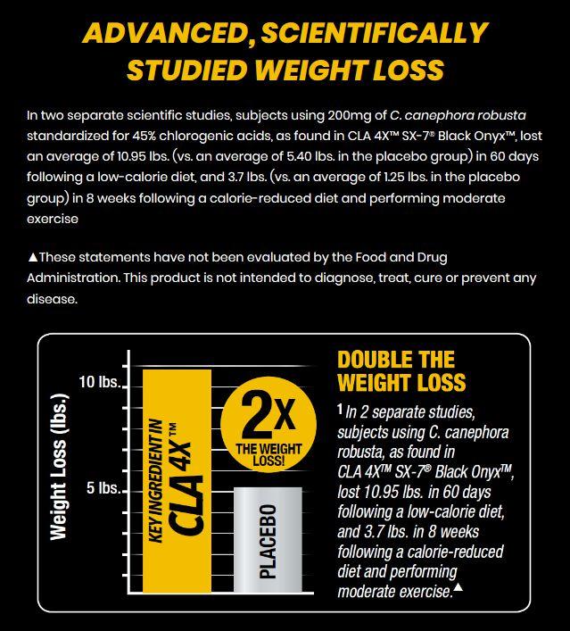 dieta ipocalorica moderata ed equilibrata