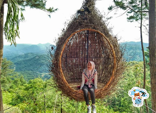 Rumah pohon pabangbon leuwiliang bogor