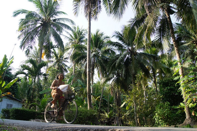Vietnam's Coconut Kingdom