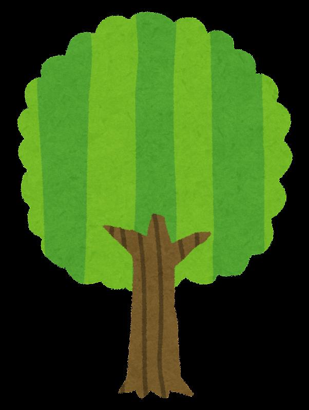 木の成長過程のイラスト かわいいフリー素材集 いらすとや
