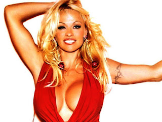 Super Hot Pamela Anderson Amazing Desktop Wallpaper