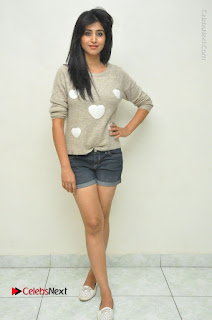 Actress Model Shamili (Varshini Sounderajan) Stills in Denim Shorts at Swachh Hyderabad Cricket Press Meet  0040.JPG