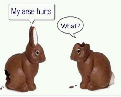 leftover chocolate bunnies