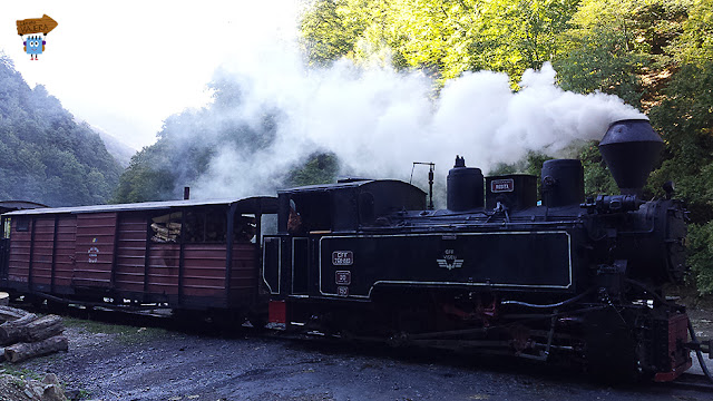 Tren Mocanita - Viseul de Sus
