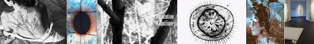 http://reconstitution-magnifique.blogspot.fr/
