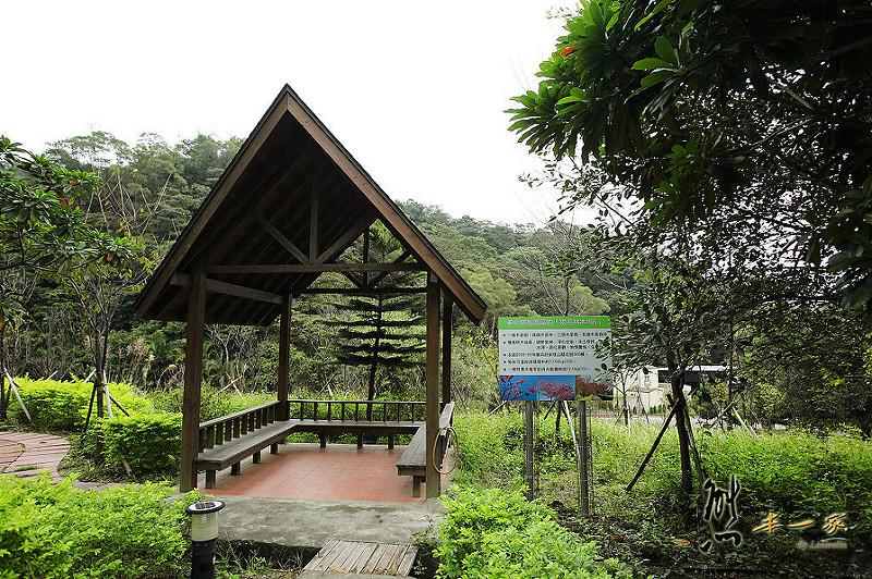 三峽私房景點櫻花林 樹木銀行|三峽碳中和樂園
