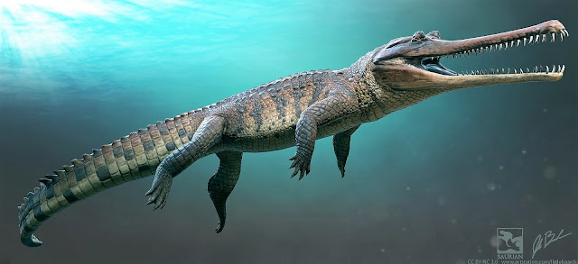 When is a croc not a croc? When it's a thoracosaur