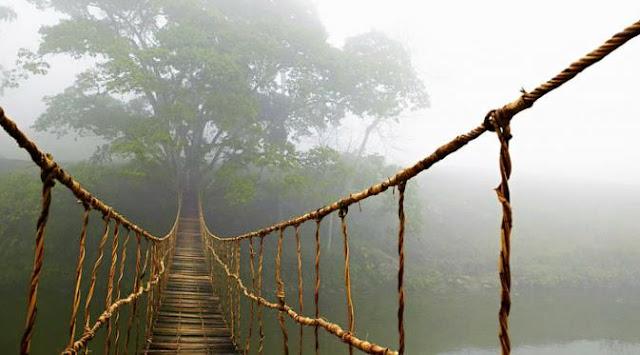 'Gaib hingga Terkutuk' Ini 5 Jembatan Unik di Dunia