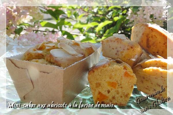 Mini-cakes à l'abricot à la farine de maïs